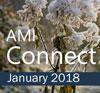 Connect Jan 2018